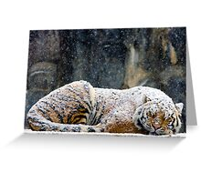 Warm Coat Greeting Card