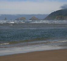 Oregon Coast by shutterbugperez