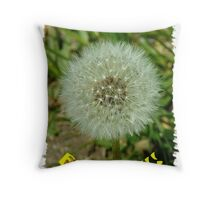 051311-118 Throw Pillow