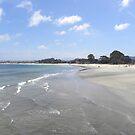 The Beach at Monterey Bay, CA by Sandra Gray