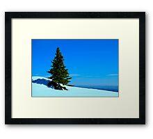 Lone Alpine Tree Framed Print