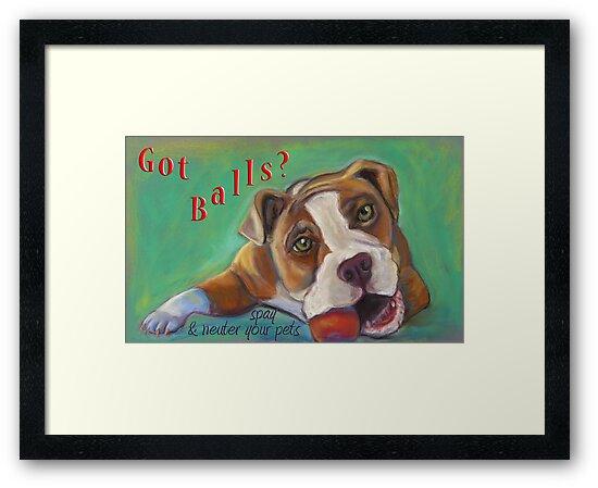 Bulldog - Spay/Neuter by Ann Marie Hoff
