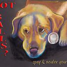 Golden Lab - Spay/Neuter by Ann Marie Hoff