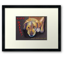 Golden Lab - Spay/Neuter Framed Print