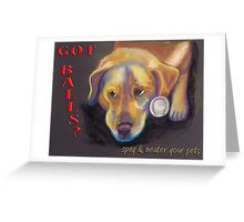 Golden Lab - Spay/Neuter Greeting Card