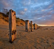 SENTINELS by Rick Knowles