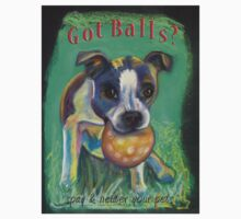 Got Balls? Boston Terrier by Ann Marie Hoff