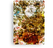 Nested Web Structure Canvas Print