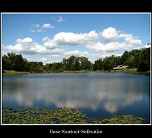 Long Lake & Waterlilies - Reinstein Woods by Rose Santuci-Sofranko