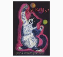 Got Balls? Juggling Cat by Ann Marie Hoff