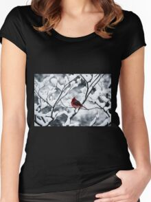 Cardinal In Snow Covered Tree Women's Fitted Scoop T-Shirt