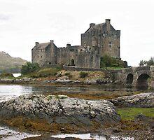 Eileen Donan Castle - Dornie in Ross & Cromarty  by Sherri Fink
