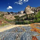 Glacial Grooves Lake Blanche by Ryan Houston