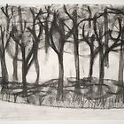 ghost trees by Kathleen Cameron