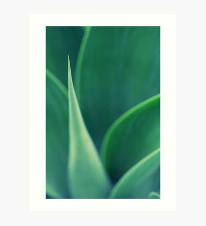 Abstract Leaves Art Print