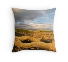 Driftwood & Dunstanburgh Throw Pillow