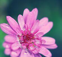 Japanese Flowers II by JoeyKelava
