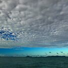 Blue Cloudy Sky At Sea by 104paul