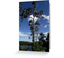 Blowing in the wind. Greeting Card