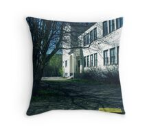 7.5.2011: End of the School Days III Throw Pillow