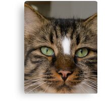 You blink..I win Canvas Print