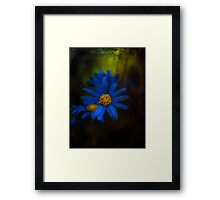A Measure Of Power.... Framed Print