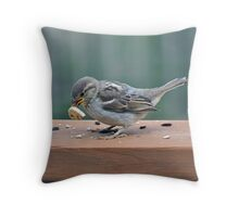 Fledgling house sparrow learning to eat on her own Throw Pillow