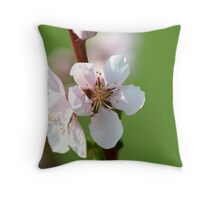 REDREAMING APPLE BLOSSOM Throw Pillow