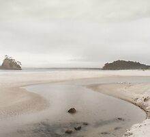 Whangapoua Beach by Susie Peacock