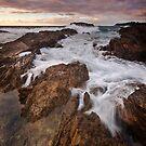 On the rocks.  by DaveBassett