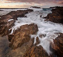 On the rocks.  by DaveBassett
