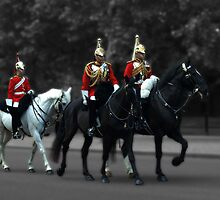 Household Cavalry by Chris Day