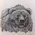 Grizzly by freespirit1972