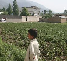Pakistan- An Afghan boy  view the house of former al-Qaida leader Osama bin Laden by Adnan Ali Qureshi