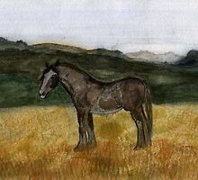 71 - CLYDESDALE HORSE - DAVE EDWARDS - WATERCOLOUR - 1997 by BLYTHART
