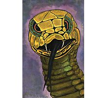 91 - SNAKE - DAVE EDWARDS - WATERCOLOUR - 2002 Photographic Print