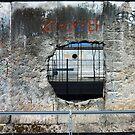 Hole in the Berlin Wall  by alokojha