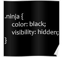 CSS Ninja Poster