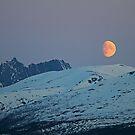 Moon by Frank Olsen