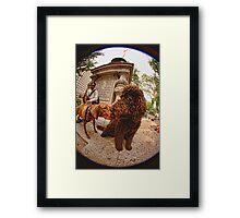 Hershey and Harrison BFF I Framed Print