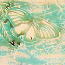 Butterfly Print 5 by Holly Daniels
