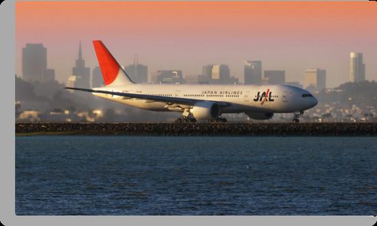 Japan Airlines at San Francisco by MattGranz