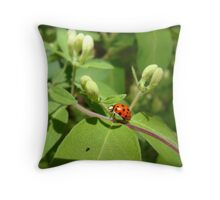 Little Lady and the Fly Throw Pillow