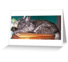Contentment Greeting Card