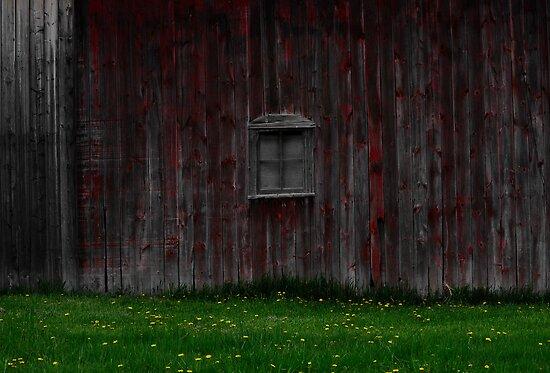 Red Barn Window by Sandra Guzman