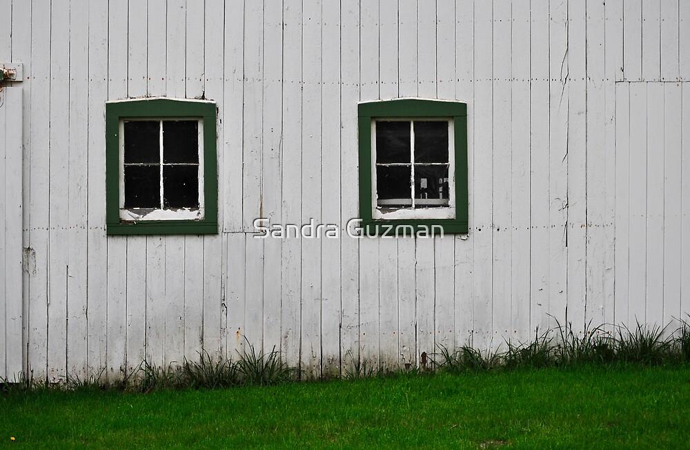 Green Barn Window by Sandra Guzman