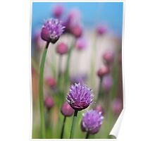 Simply Chives Poster