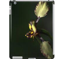 Spotted Donkey iPad Case/Skin