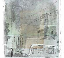 America by Mary Ann Reilly