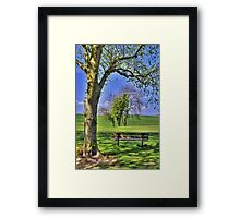 In the Dappled Shade Framed Print